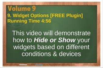 PLR 4 WordPress Vol 9 Video 9 Widget Options
