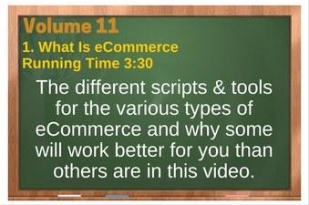 PLR 4 WordPress Vol 11 Video 1 What Is eCommerce
