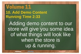 PLR 4 WordPress Vol 11 Video 10 WooCommerce Add Demo Content