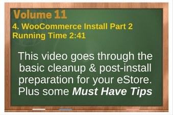 PLR 4 WordPress Vol 11 Video 4 WooCommerce Install Part 2 (WordPress Settings & Basic Cleanup)