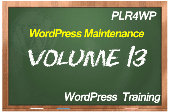 PLR for WordPress Volume 13 WordPress Maintenance