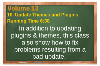 PLR for WordPress Volume 13 Video 10. Update Themes and Plugins