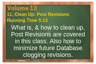 PLR for WordPress Volume 13 Video 11. Clean Up: Post Revisions