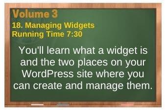 plr4wp Vol 3 video 18 Managing Widgets