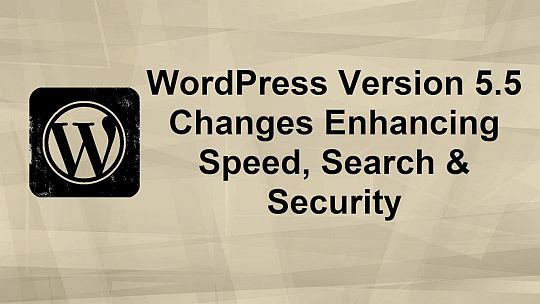 PLR4WP WordPress 5.5 Update on Speed Search and Security